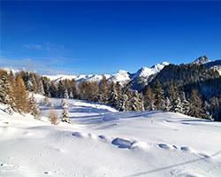 météo station alpes du sud montclar, météo station ski alpes haute provence