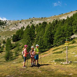randonnée montagne montclar, randonnée montagne alpes haute provence