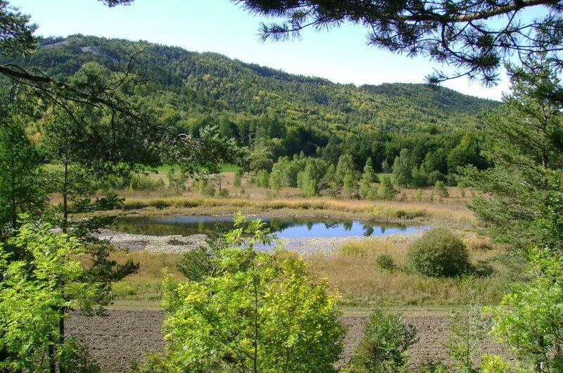 Lac de St Leger