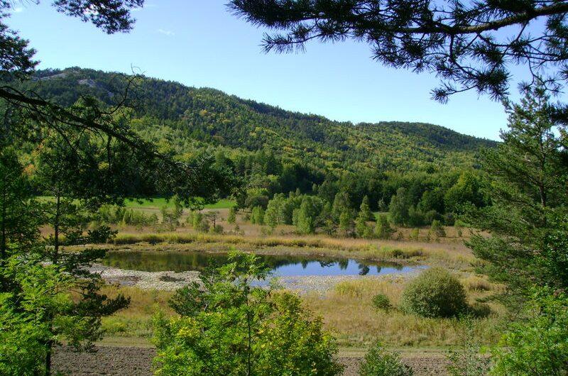 Le Lac de Saint-Léger